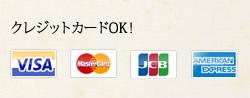 各種クレジットカードOK!